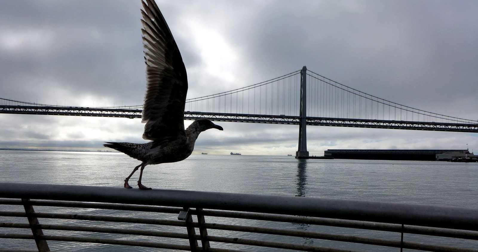 Oakland bay bridge et rues de san Francisco.