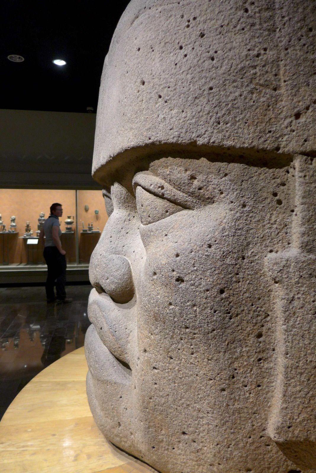 Fabuleux musée d'anthropologie, gigantesque nous y avons quasiment passé une journée tellement immense et intéressant. Les salles d'exposition sont réparties sur deux niveaux. Les salles du rez-de-chaussée sont dédiées au Mexique pré-hispanique &#x3B; à l'étage, les collections portent sur le mode de vie actuel des Indiens du Mexique, chaque culture contemporaine étant située juste au-dessus de la culture préhispanique dont elle descend