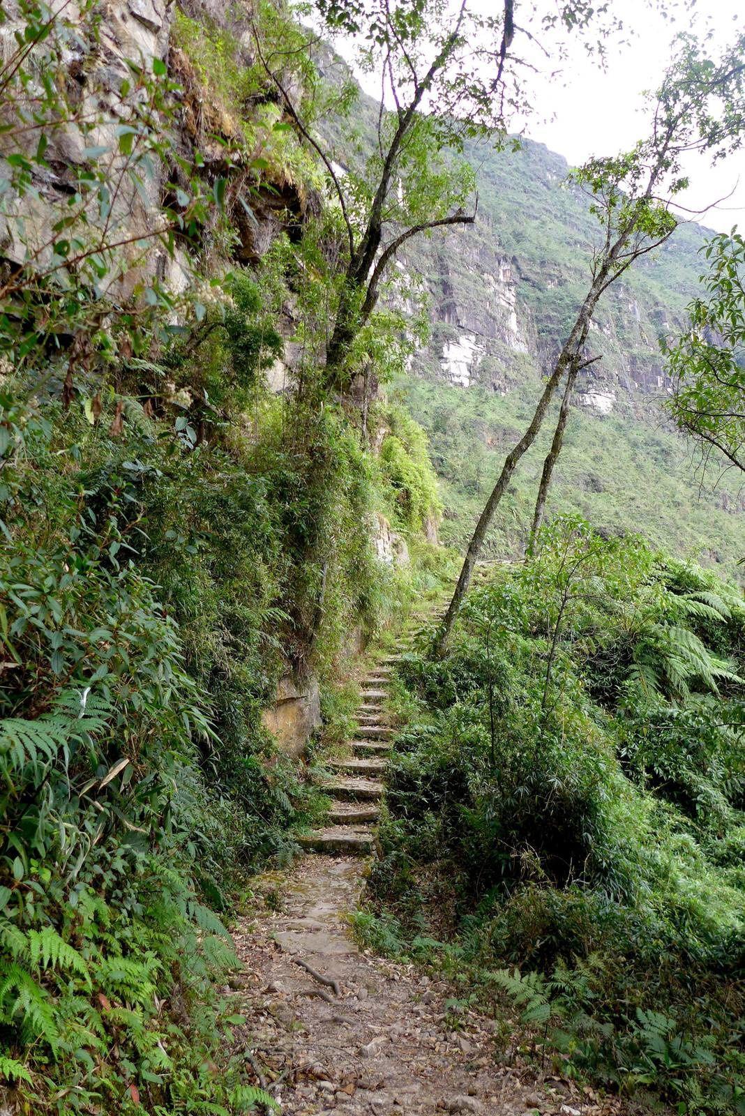 Marche vers Catarata Gocta