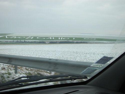 Demain, z'annoncent de la neige ! le champ va ressembler à ça