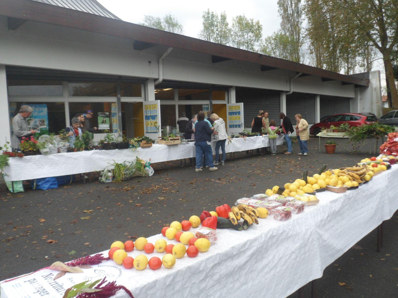 La Bourse aux Plantes et le partage à Bayonne