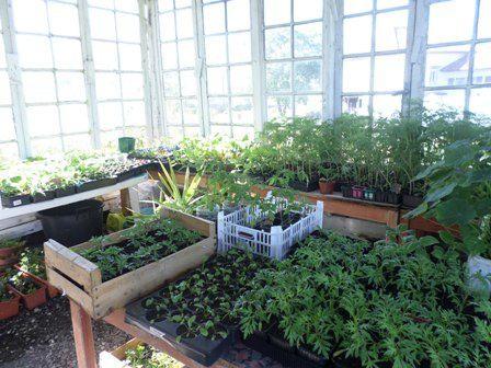 Une nouvelle jardinière au Jardin du Trocoeur