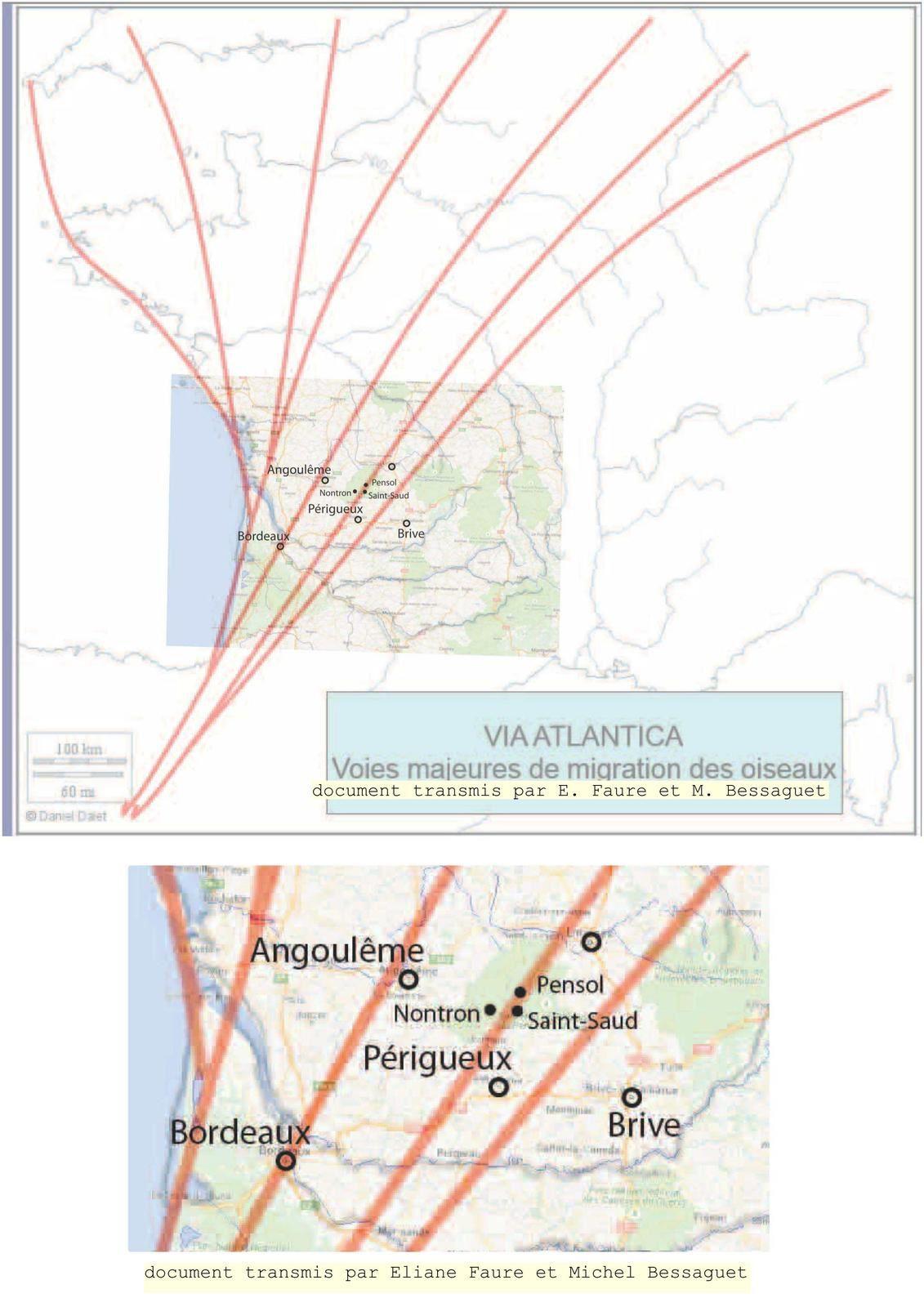 voies majeur de migration des oiseaux