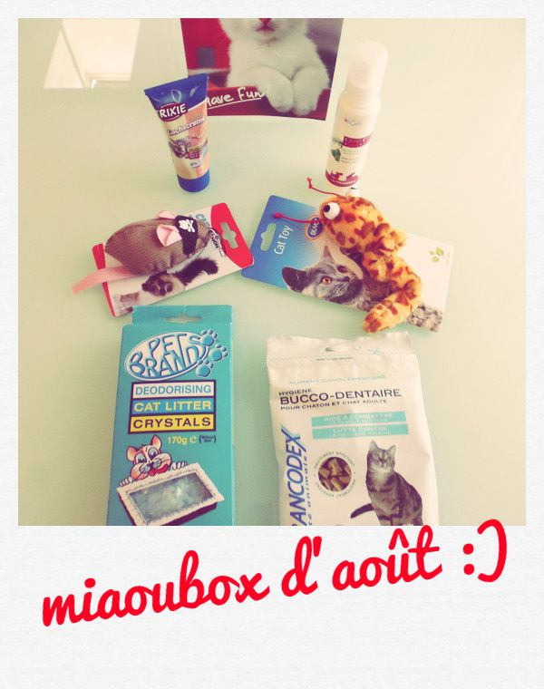 have fun ! have a miaoubox ^^