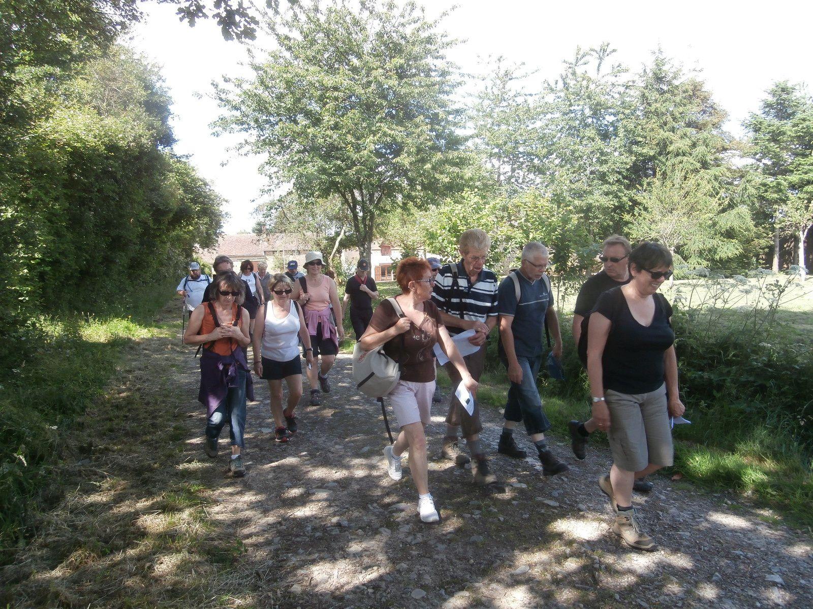 On reste assez longtemps sur le plateau avant de traverser les bois de LINTHE et de revenir vers le domaine du GASSEAU.