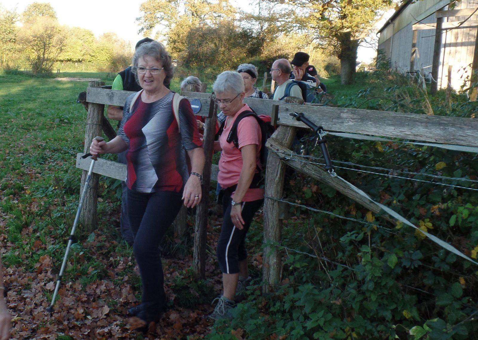 Il y a même quelques obstacles à franchir près du haras de la Gourdinière !!
