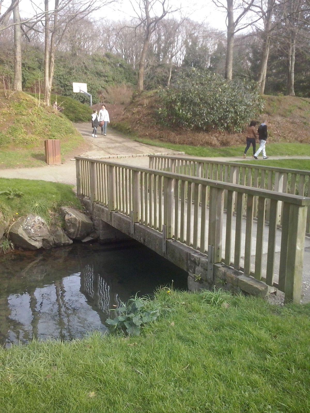 l'un des petits ponts du parc enjambant l'autre rive ......