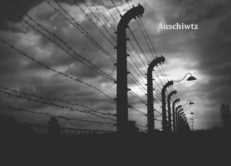 Henriette Cohen se souvient d'Auschwitz...