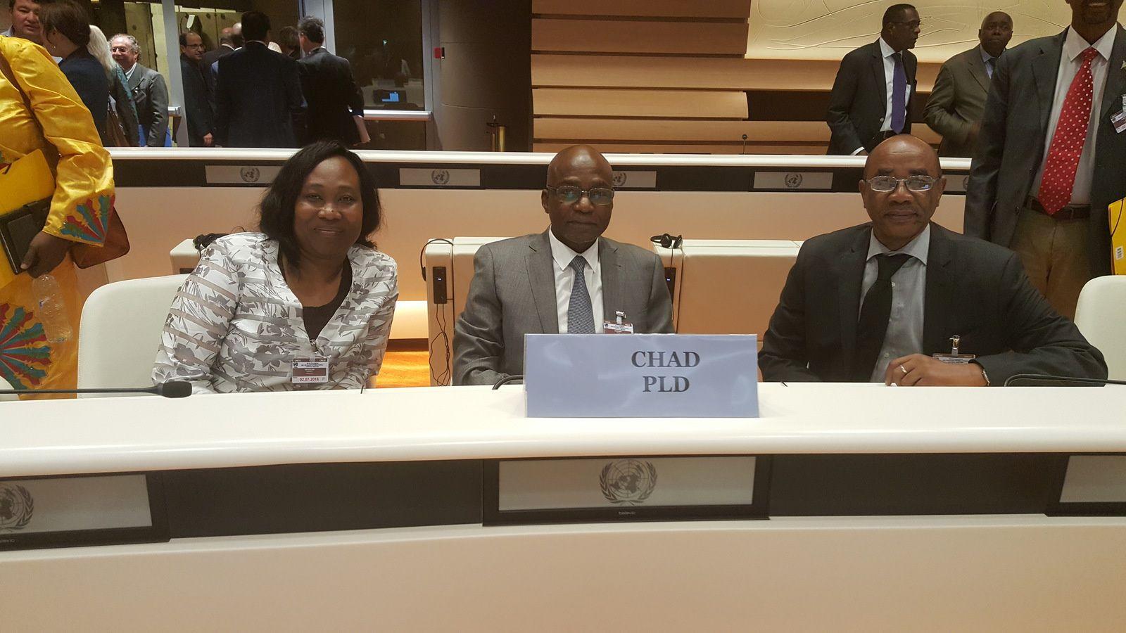 Saleh Kebzabo (UNDR) et Mahamat Ahmat Alhabo (PLD)
