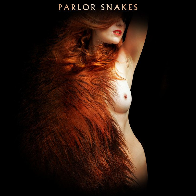 Parlor Snakes album on Bandcamp