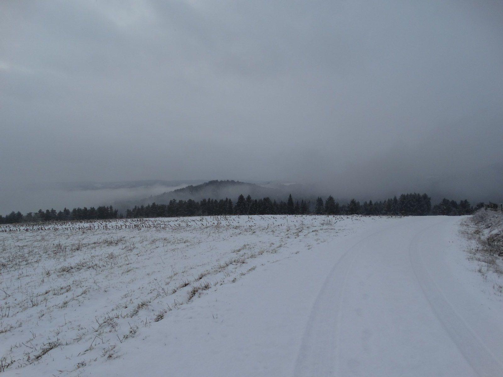 Marche méditative d'hiver