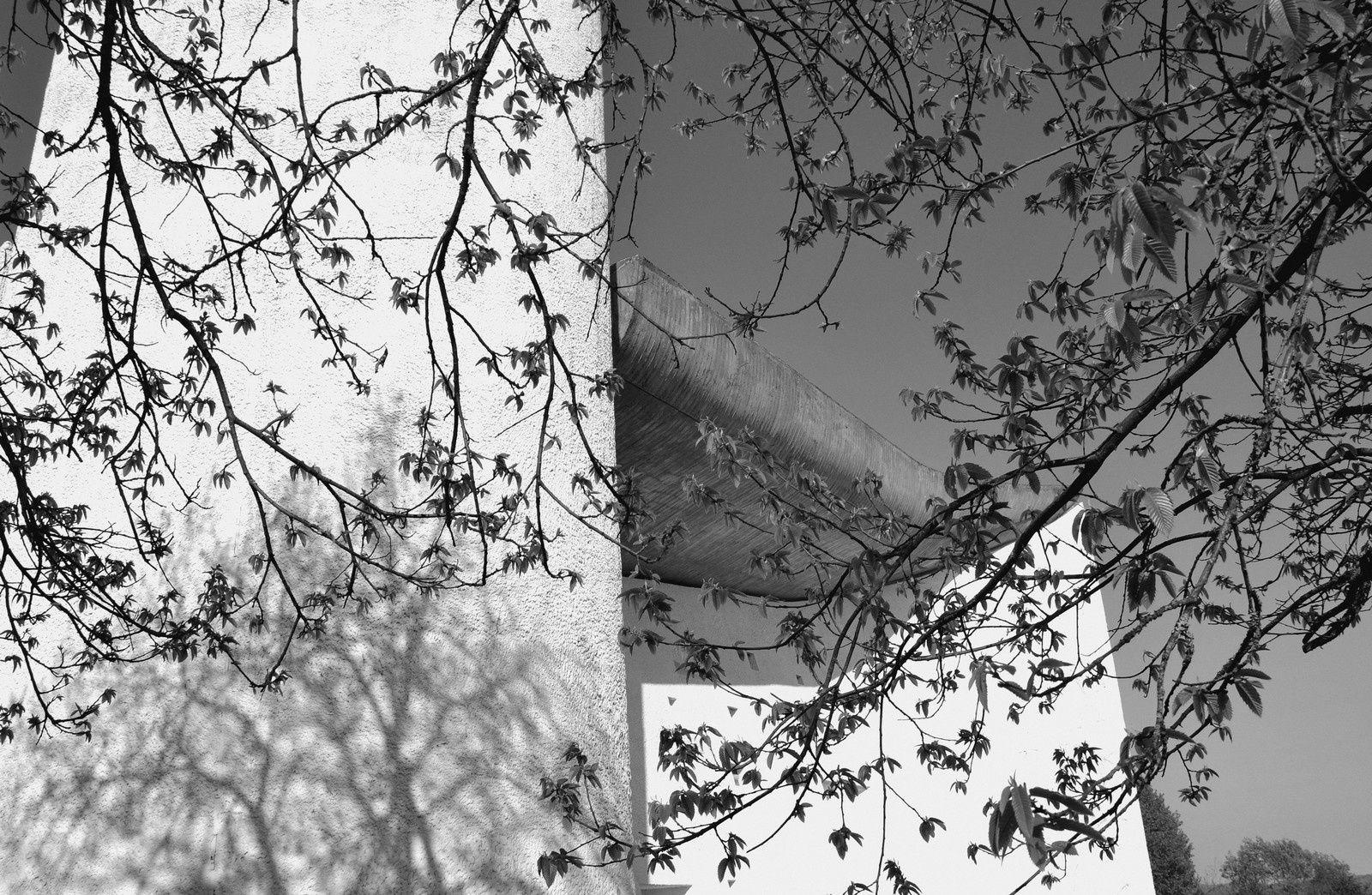 Printemps en noir &amp&#x3B; blanc chez Le Corbusier - Ronchamp