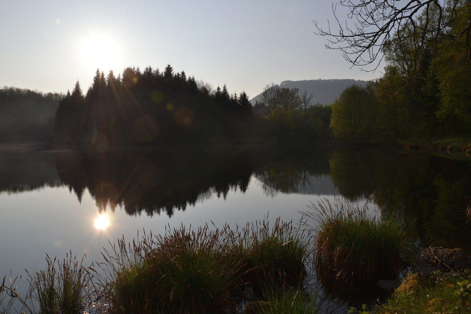 A l'étang du Rosbeck - Belonchamp, Haute-Saône