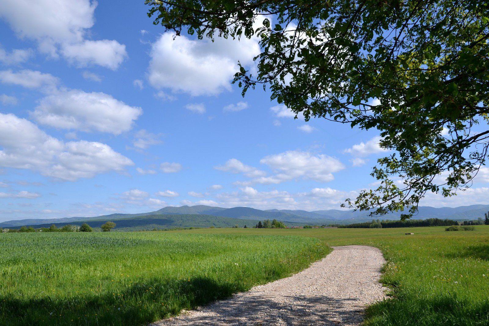 La campagne autour d'Evette-Salbert