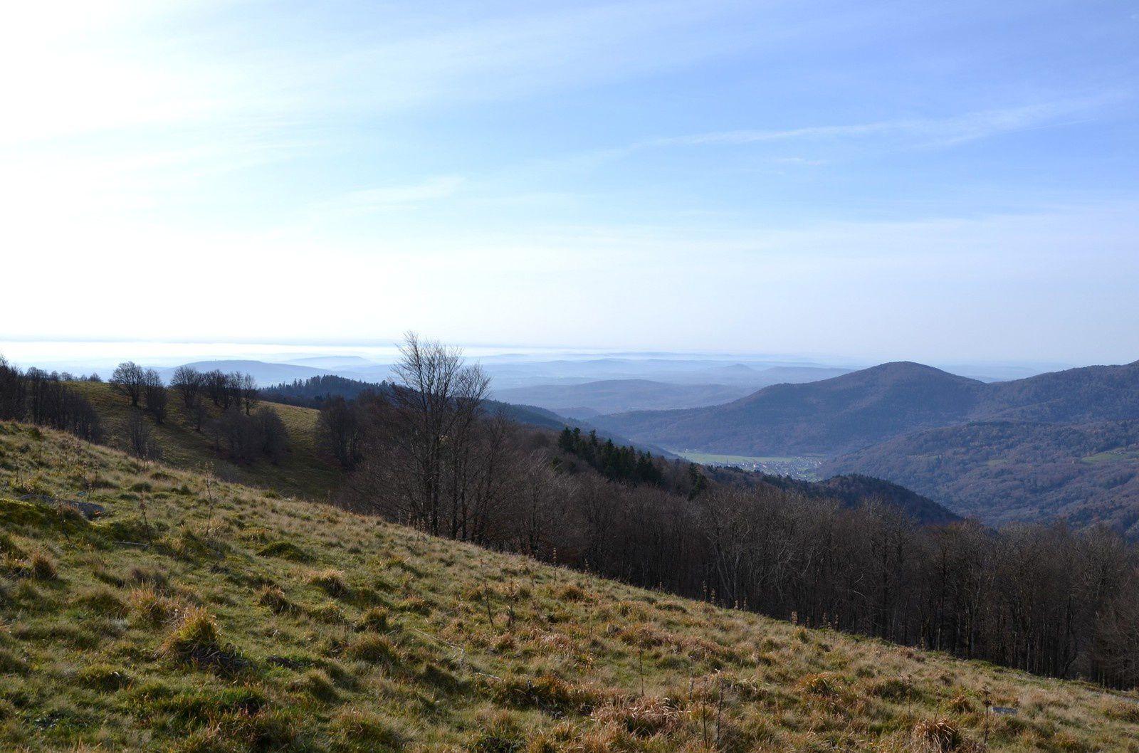 Depuis le Wissgrut, vers le sud : Lepuix Gy, le Salbert ...