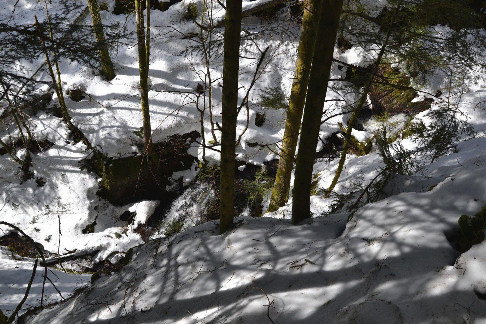 Ballon d'Alsace - Le Saut de la Truite - hiver