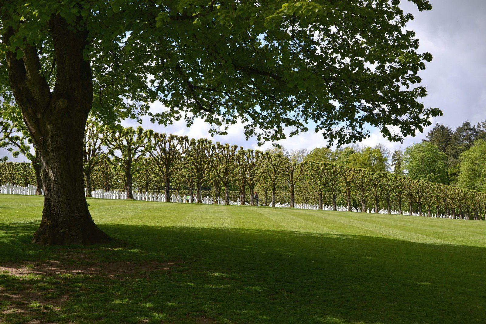 Le cimetière américain de Romagne-sous-Montfaucon (Meuse)