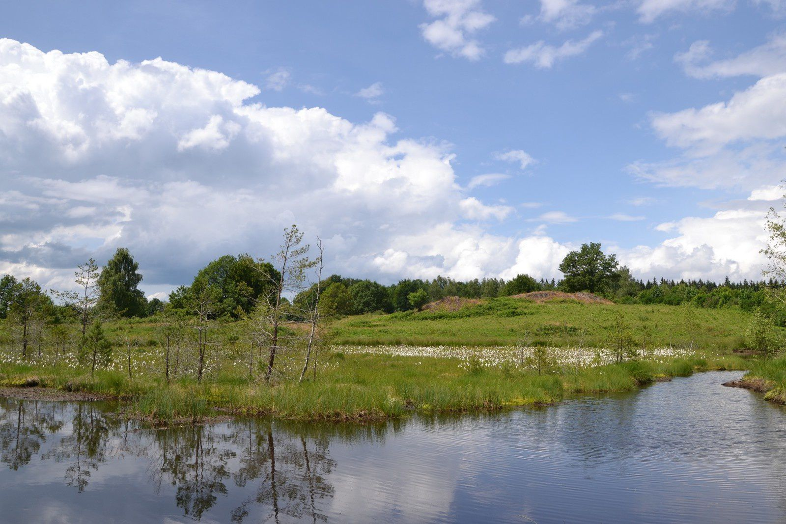 Les Mille étangs - les Grilloux