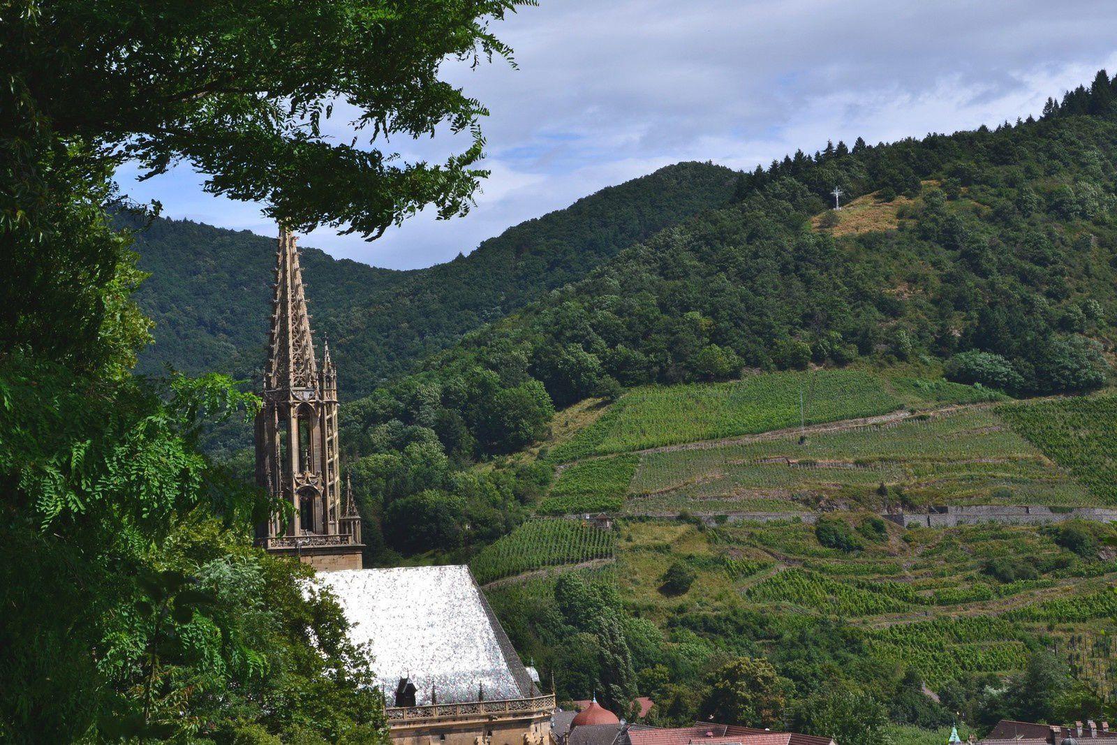 Thann - nature et culture(s)