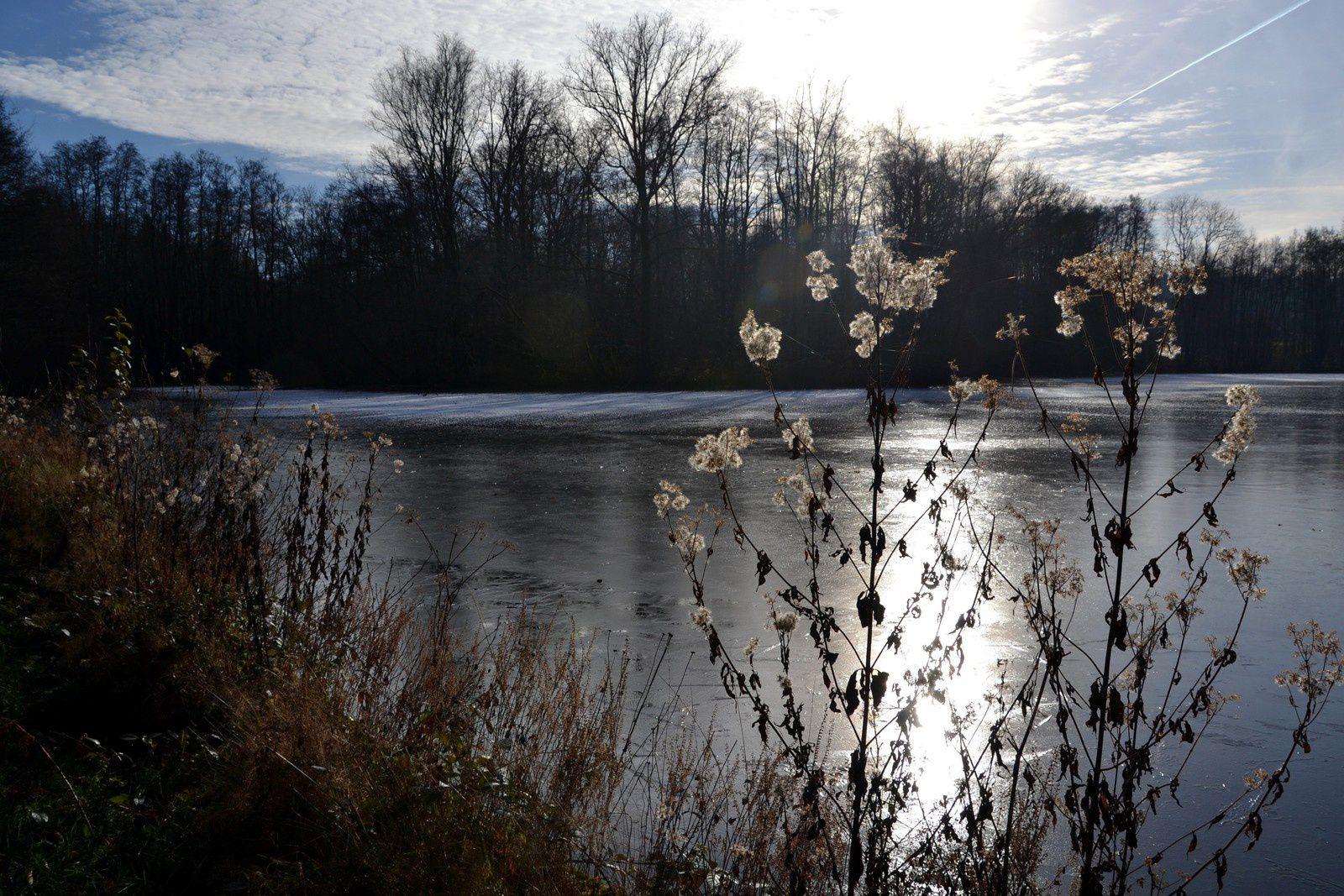 Ecromagny - Les Mille étangs