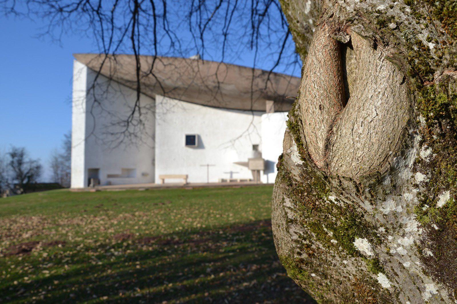 Soleil d'hiver chez Le Corbusier