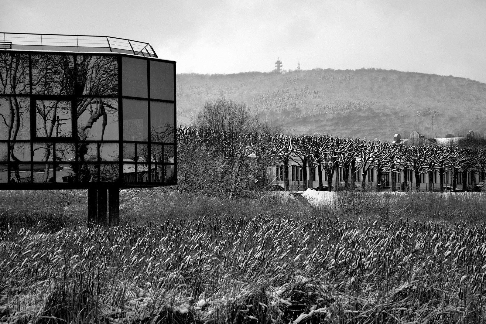 Belfort - hiver en noir &amp&#x3B; blanc