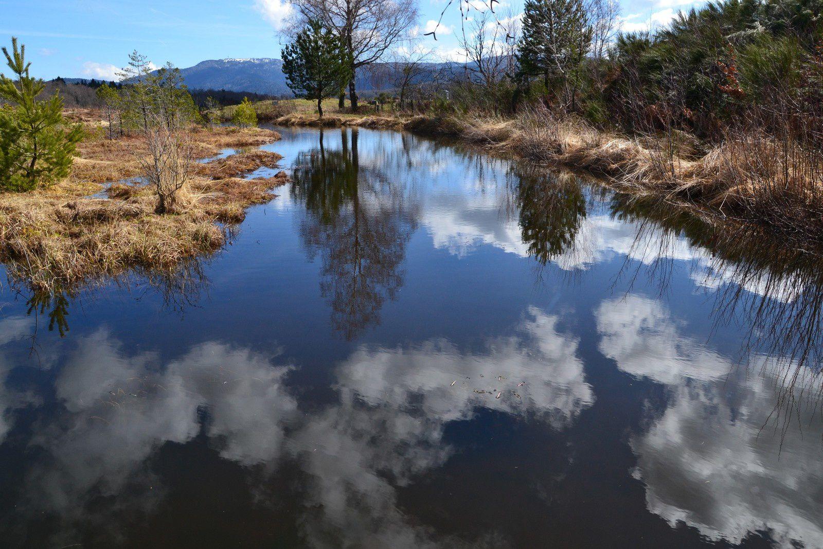 Le Plateau des Grilloux - fin d'hiver