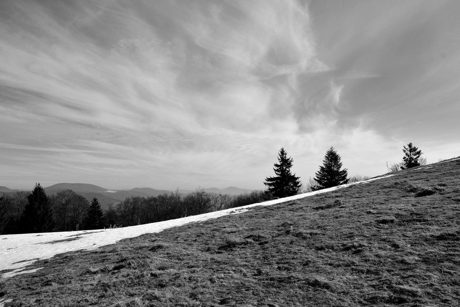 Dernière neige au Wissgrut