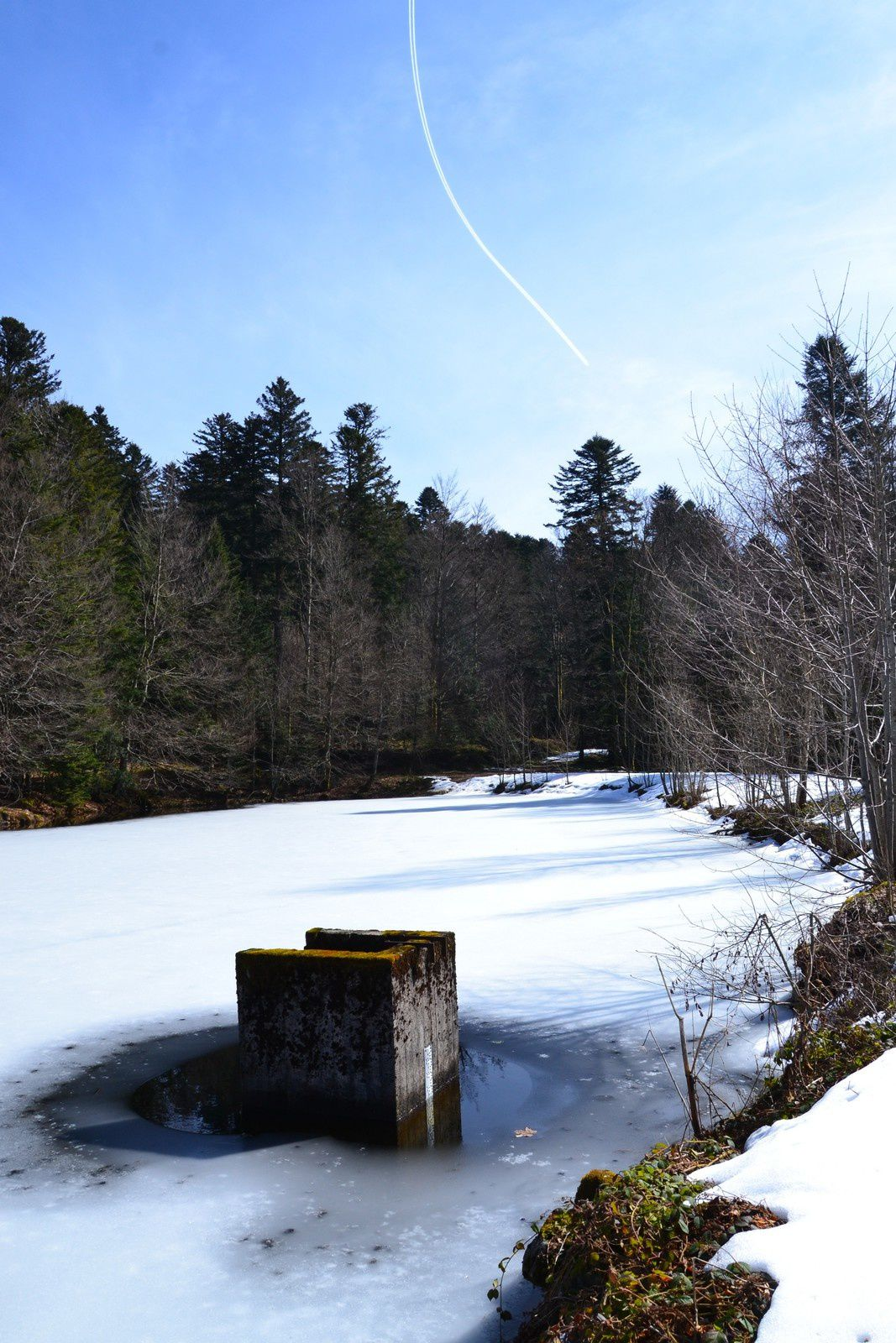 Dernière neige au Ballon d'Alsace