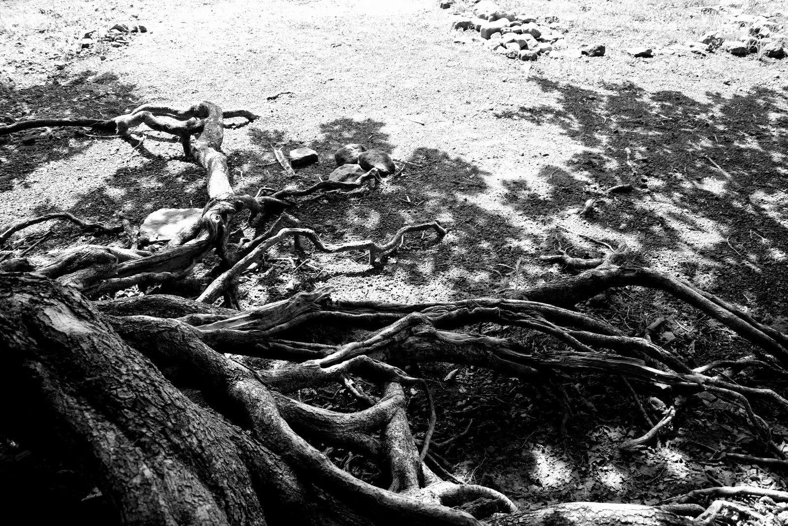 Bassin de Champagney - vidange décennale