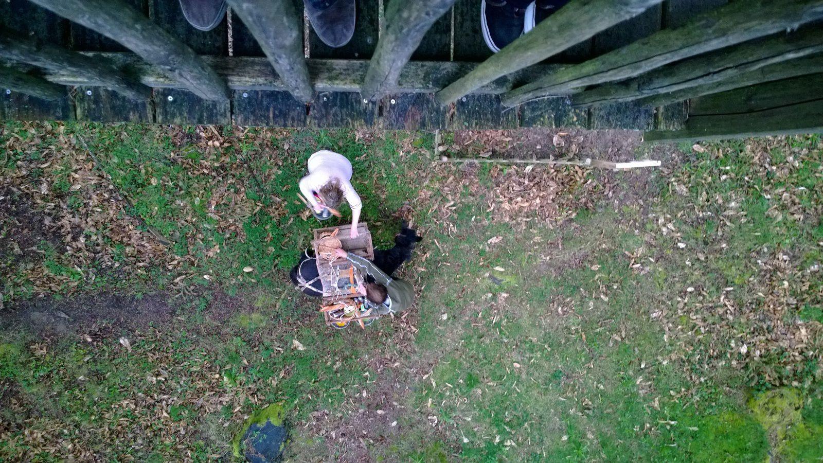 Photo 10 : En contrebas Myrtille et ses copains grands pourvoyeurs de petits déjeuners :) (Et les pieds tout là-haut, entre les montants de la rambarde de la terrasse ? Compte-tenu de la disposition des lieux, je ne vois pas trop comment, pour réaliser cette photo, j'aurais pu faire autrement que cadrer mes pieds et ceux de Madame Canard venue également profiter du spectacle offert par le passage de Myrtille. Par contre, j'aurais pu faire une retouche pour les effacer &#x3B; oui, peut-être… mais j'aime bien l'authenticité et puis vous m'avez appris à avoir la flemme :)