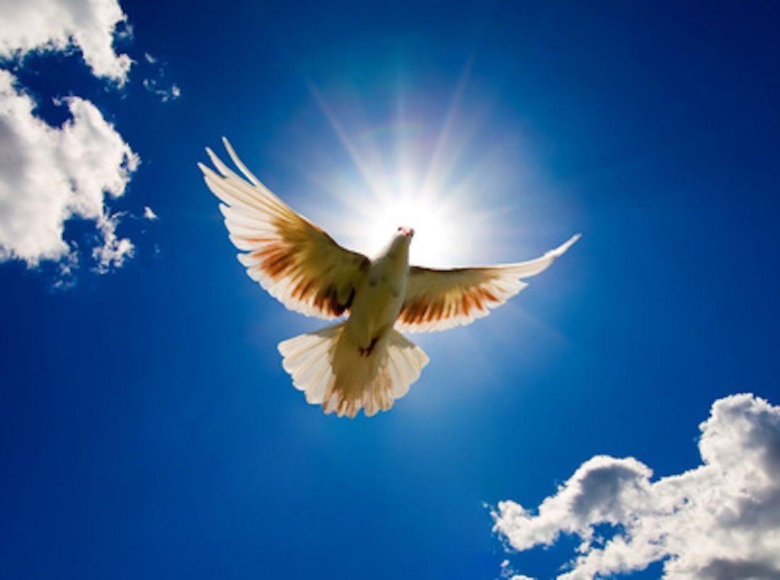 Predigt am 8.1.17:  Der Heilige Geist – wer oder was ist das?