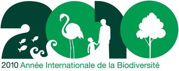 Insectes et protection de la biodiversité (1)