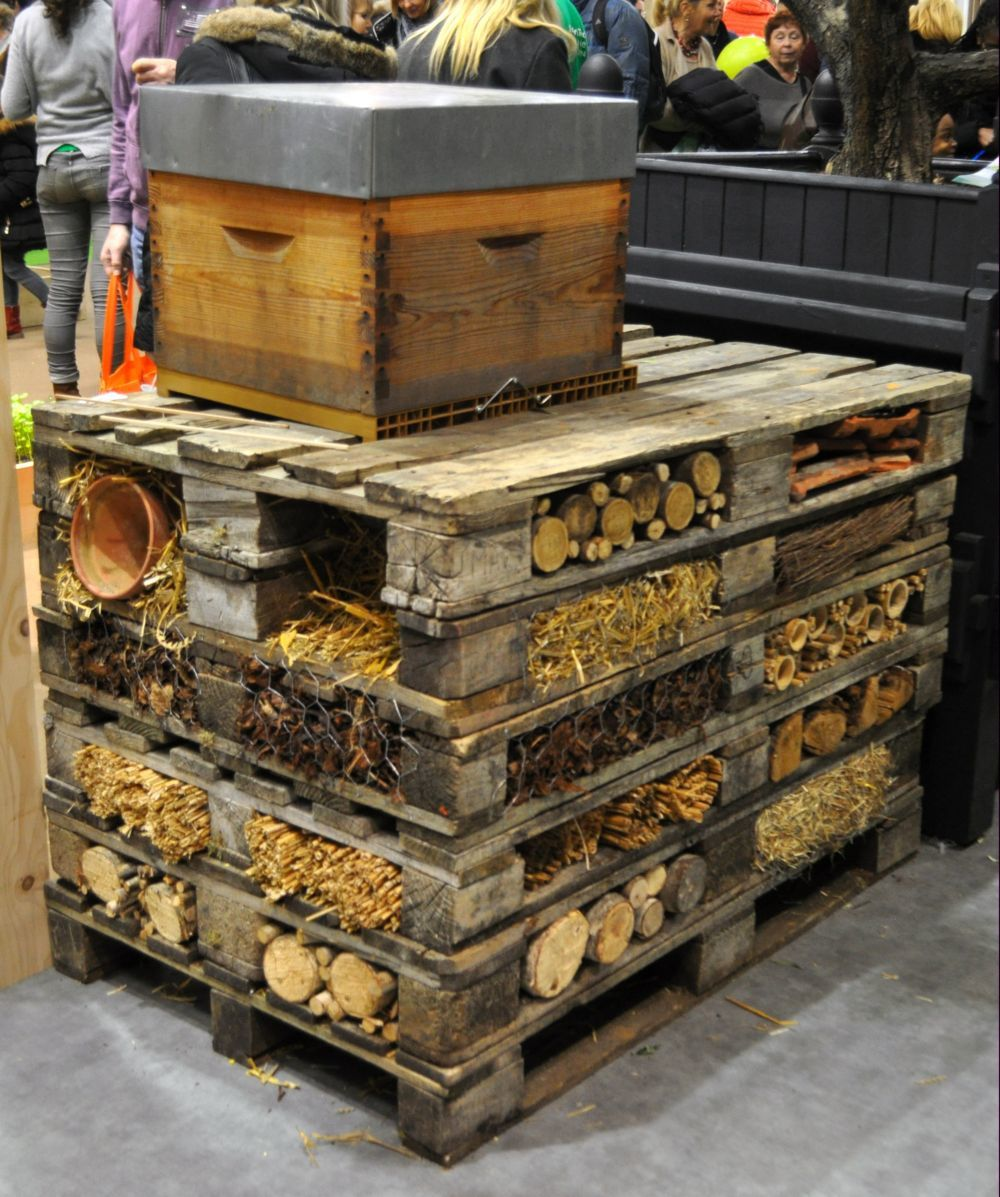 les insectes taient ils au salon de l agriculture 2015. Black Bedroom Furniture Sets. Home Design Ideas