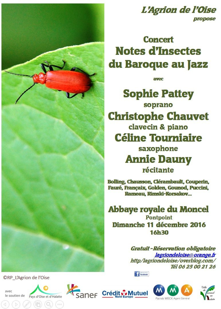 Concert &quot&#x3B;Notes d'Insectes&quot&#x3B; 2ème édition 2016