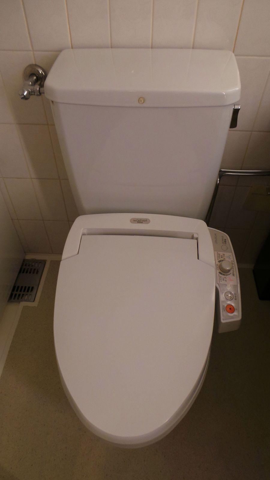 Toilettes japonaises.........à tester absolument dans une vie !