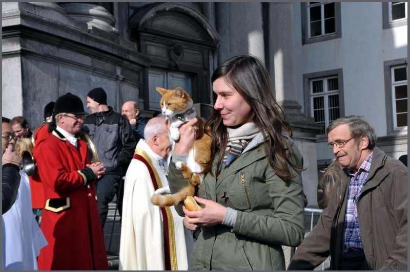 Ce dimanche 25 octobre 2015 à 10h | Messe de la Saint-Hubert à la Cathédrale de Namur