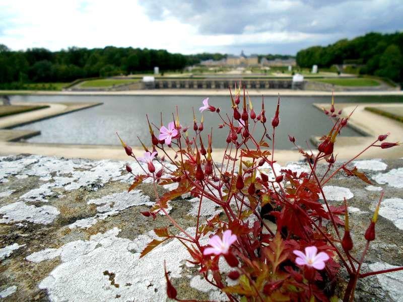 Images : un pêle-mêle photographique de la visite du château et des jardins, avec Valérie et Christian.