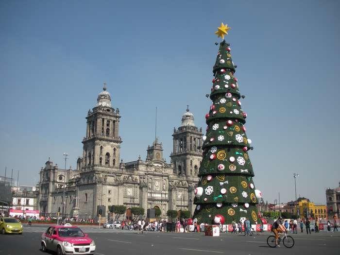 L'arbre de Navidad rivalise de hauteur avec les tours de la cathédrale de Mexico