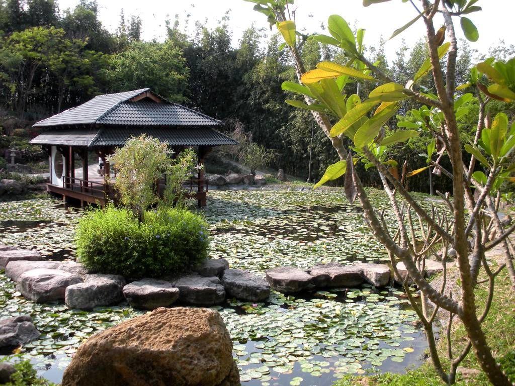 Un jardin japonais sous le soleil de México, c'est possible ! Naturellement magique !