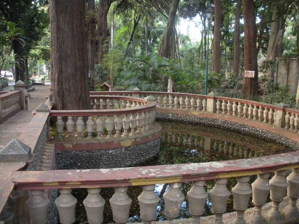 Sous les vieux ombrages du parc Melchor Ocampo à Cuernavaca : comme une forêt maçonnée