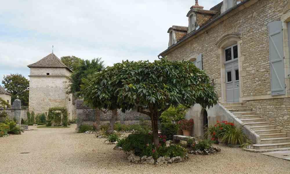 Un tour de ville dans une capitale du vin blanc, Meursault