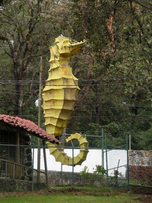 Hippocampe géant, un étonnant décor en forêt.