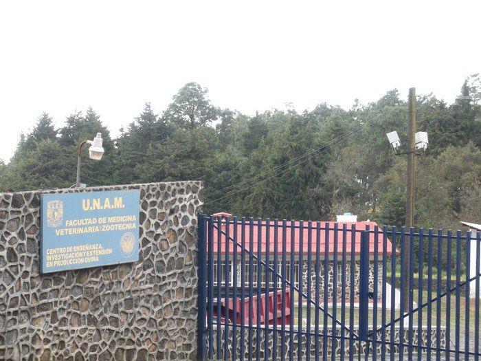 Un centre universitaire vétérinaire sur la production des ovins.