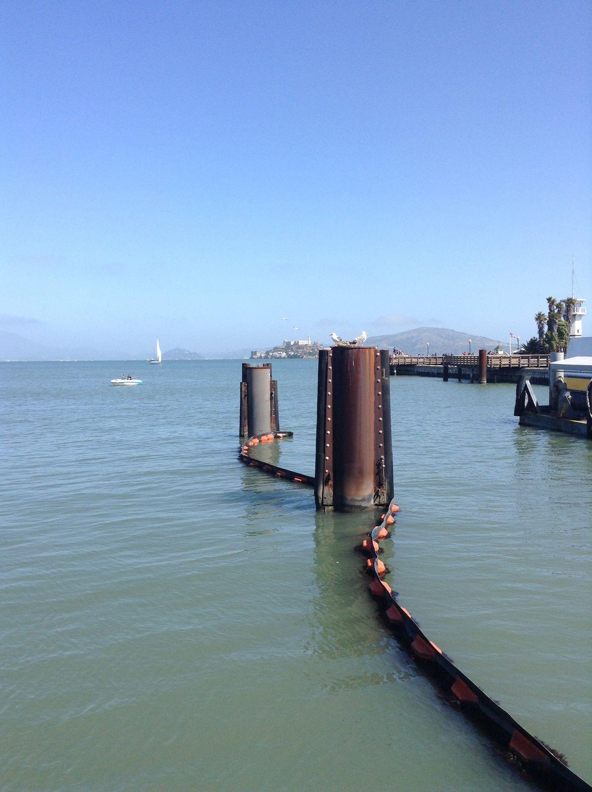 GBB, Muir Woods et Alcatraz