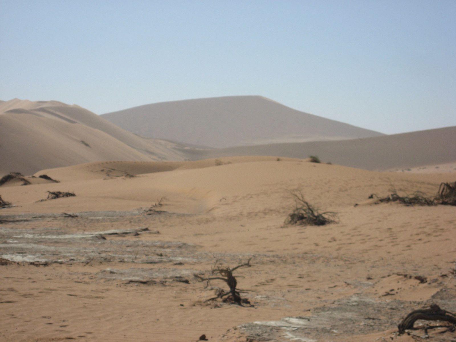 Sixième étape : Le Namib