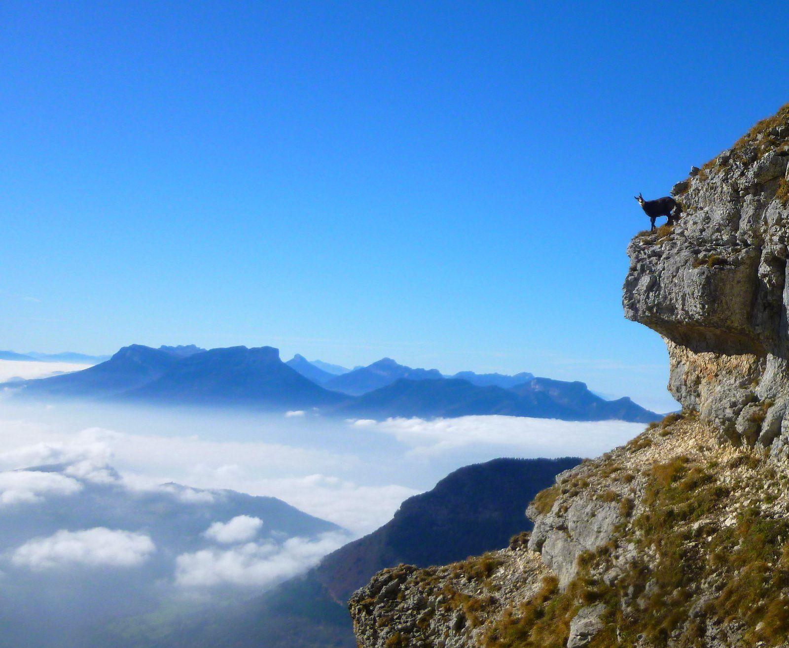 Il est à environ 30 m ... on se dit qu'il ne va pas le faire, 6 m à sauter avec attérrissage dans la pente avant une nouvelle barre rocheuse ....