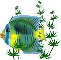 Comptine les petits poissons dans l'eau