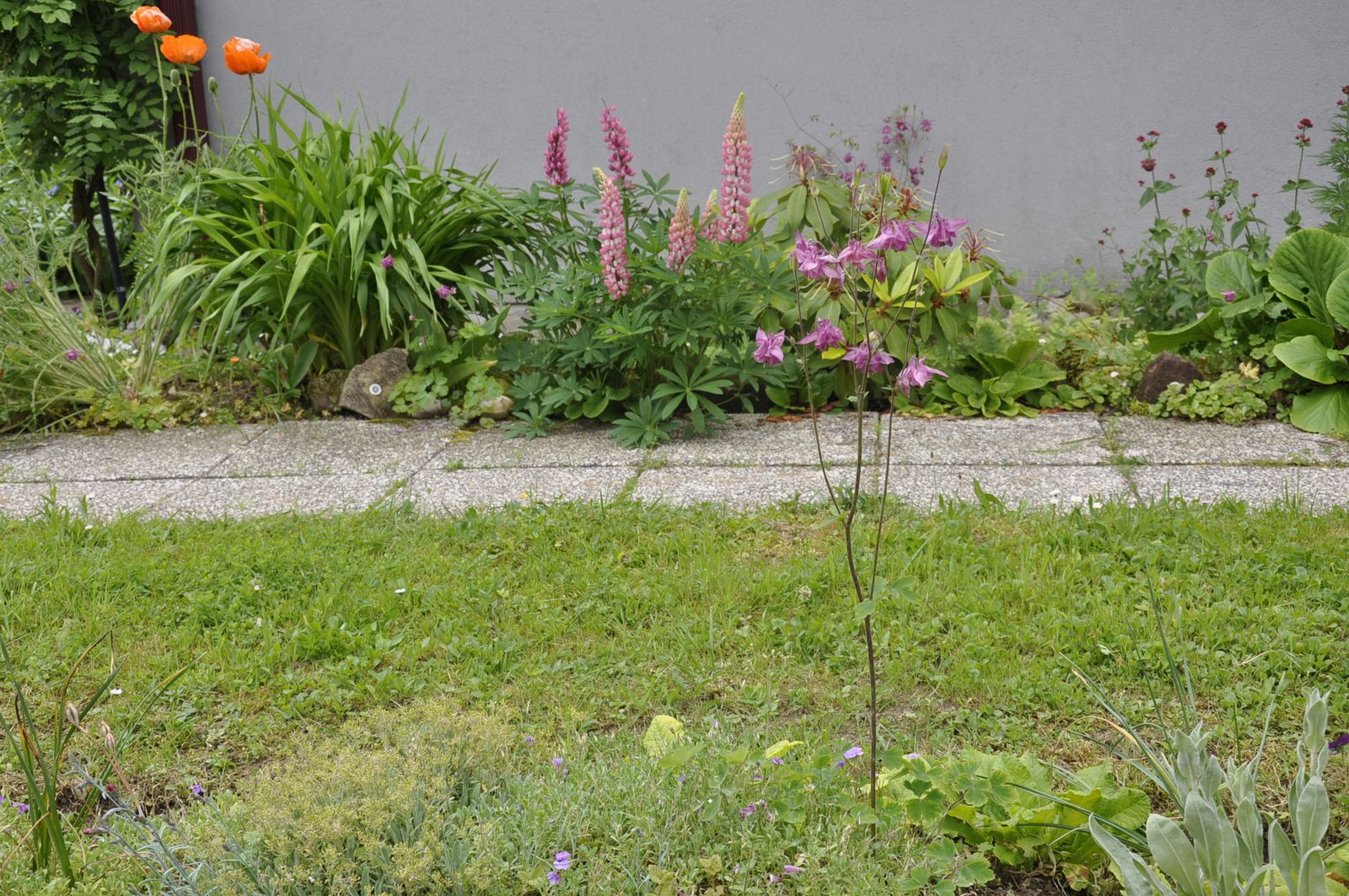 Jardin d agrement sans entretien mare with jardin d agrement sans entretien beliebt ides - Jardin d agrement sans entretien ...