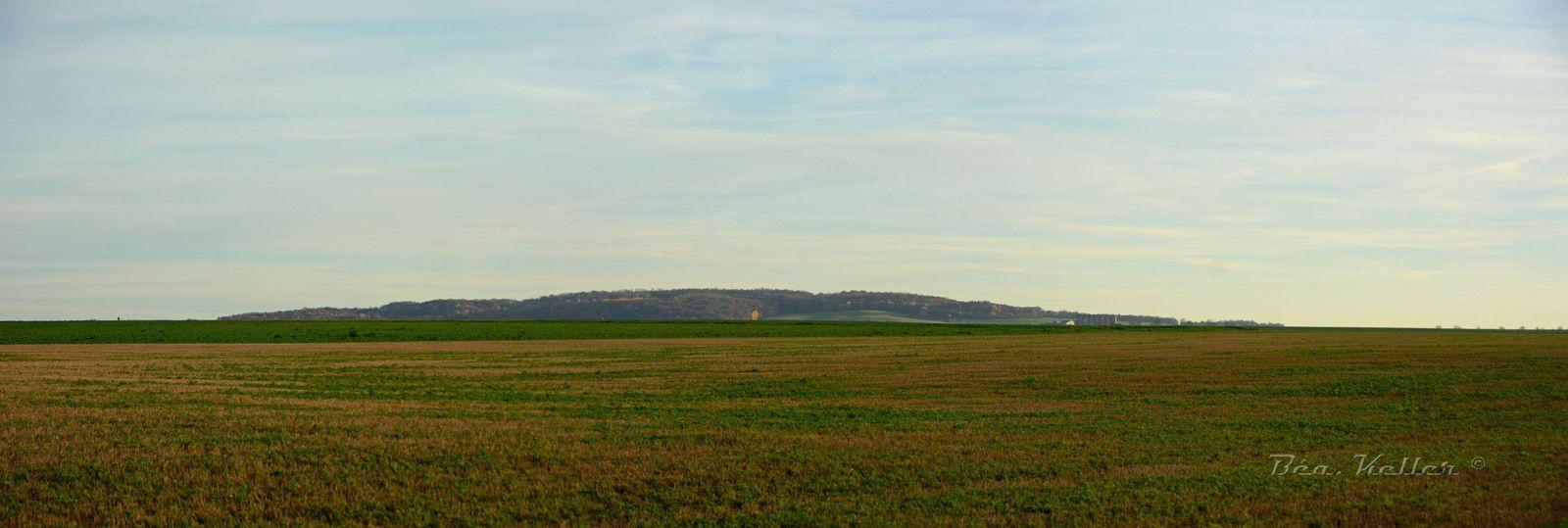 Sur la butte face à la stèle, c'est le village et le fort de Brimont